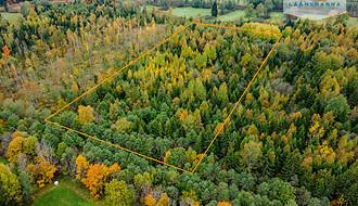Müüa maatükk, metsamaa